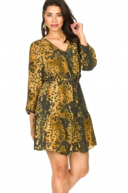 Dante 6 |  Leopard dress Kirstyn | green  | Picture 4