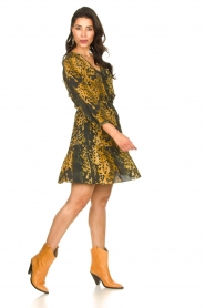 Dante 6 |  Leopard dress Kirstyn | green  | Picture 3