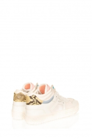 D.A.T.E |  High leather sneakers Nebraska | white  | Picture 4