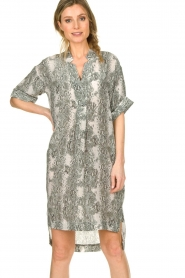 Notes Du Nord |  Silk print dress Oak | grey  | Picture 2