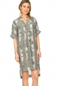 Notes Du Nord |  Silk print dress Oak | grey  | Picture 5