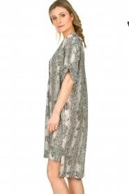 Notes Du Nord |  Silk print dress Oak | grey  | Picture 6