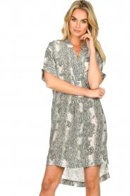 Notes Du Nord |  Silk print dress Oak | grey  | Picture 4