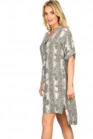 Notes Du Nord |  Silk print dress Oak | grey  | Picture 5