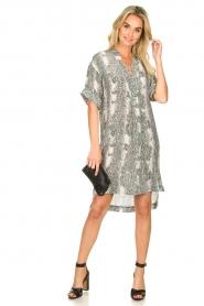 Notes Du Nord |  Silk print dress Oak | grey  | Picture 3