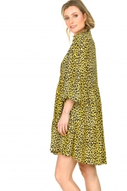 Notes Du Nord |  Panther dress Olivia | yellow  | Picture 6