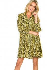 Notes Du Nord |  Panther dress Olivia | yellow  | Picture 4