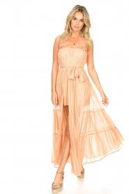 Sundress |  Strapless lurex dress Jonquille | nude  | Picture 3