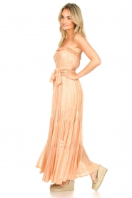 Sundress |  Strapless lurex dress Jonquille | nude  | Picture 5