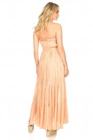 Sundress |  Strapless lurex dress Jonquille | nude  | Picture 6