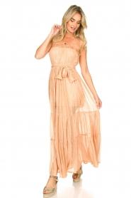 Sundress |  Strapless lurex dress Jonquille | nude  | Picture 4