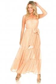 Sundress |  Strapless lurex dress Jonquille | nude  | Picture 2