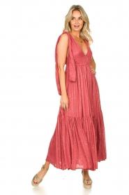 Sundress |  Sequin maxi dress Fanya | pink  | Picture 3