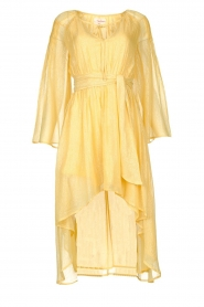 Sundress |  Lurex maxi dress Alix | yellow  | Picture 1