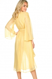 Sundress |  Lurex maxi dress Alix | yellow  | Picture 5