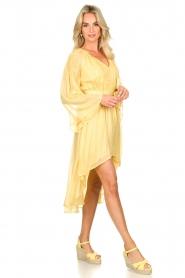 Sundress    Lurex maxi dress Alix   yellow    Picture 3
