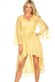 Sundress |  Lurex maxi dress Alix | yellow  | Picture 2