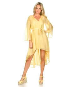 Sundress    Lurex maxi dress Alix   yellow    Picture 6