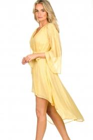 Sundress    Lurex maxi dress Alix   yellow    Picture 4