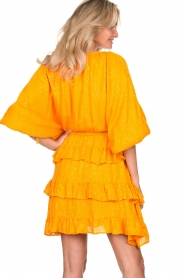 Sundress |  Lurex ruffle dress Mimosa | yellow  | Picture 6