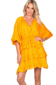 Sundress |  Lurex ruffle dress Mimosa | yellow  | Picture 2