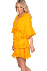 Sundress |  Lurex ruffle dress Mimosa | yellow  | Picture 5