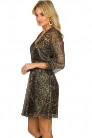 Dante 6 |  Leopard print dress Aida| animal print  | Picture 5