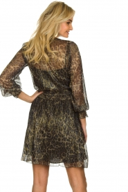 Dante 6 |  Leopard print dress Aida| animal print  | Picture 6