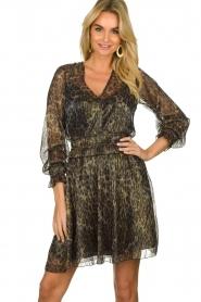 Dante 6 |  Leopard print dress Aida| animal print  | Picture 4