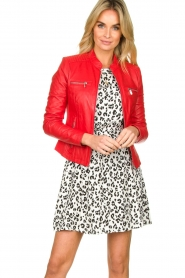 STUDIO AR BY ARMA |  Leather jacket Tuya | red  | Picture 2
