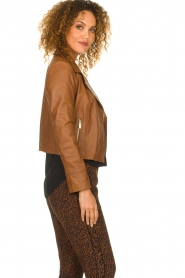 STUDIO AR BY ARMA |  Leather biker jacket Gomera | brown  | Picture 5