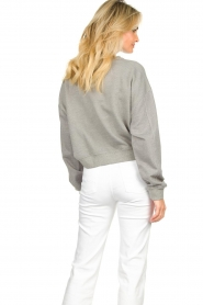 American Vintage |  Sweater with round collar Eliotim | grey   | Picture 6