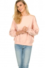 American Vintage |  Oversized sweatshirt Wititi | pink   | Picture 4