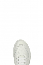 Copenhagen Footwear |  Leather sneakers 411 | white  | Picture 6