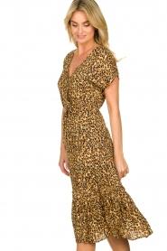 Freebird |  dierenprint | Leopard print dress Tara   | Picture 4