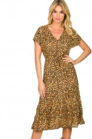 Freebird |  dierenprint | Leopard print dress Tara   | Picture 6