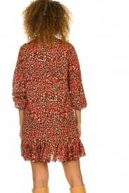 Freebird |  Leopard printed dress Diba | red   | Picture 6