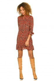 Freebird |  Leopard printed dress Diba | red   | Picture 3