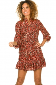 Freebird |  Leopard printed dress Diba | red   | Picture 2
