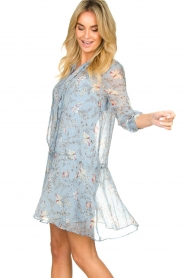 Freebird |  Floral dress Celeste | blue  | Picture 4