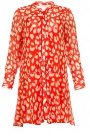 Freebird |  Dress with lurex details Celeste | red  | Picture 1
