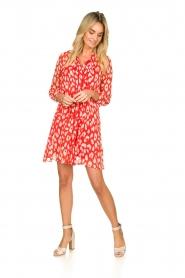 Freebird |  Dress with lurex details Celeste | red  | Picture 3