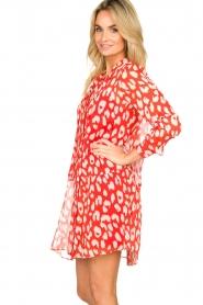 Freebird |  Dress with lurex details Celeste | red  | Picture 4