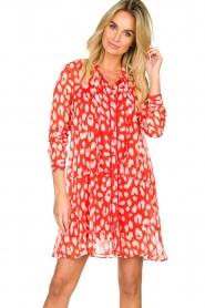 Freebird |  Dress with lurex details Celeste | red  | Picture 2