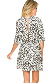 Freebird |  Dress with leopard print Minne | zwart  | Picture 5