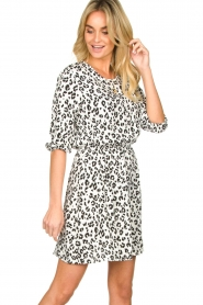 Freebird |  Dress with leopard print Minne | zwart  | Picture 2