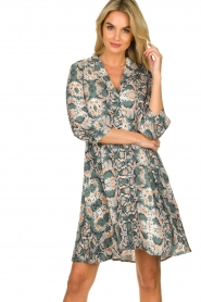Aaiko |  Snake printed dress Terri | green  | Picture 2