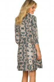 Aaiko |  Snake printed dress Terri | green  | Picture 6