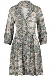 Aaiko |  Snake printed dress Terri | green  | Picture 1