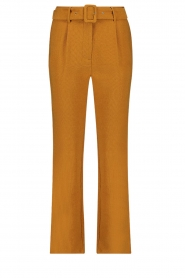 Aaiko |  Trousers Wodon | brown  | Picture 1